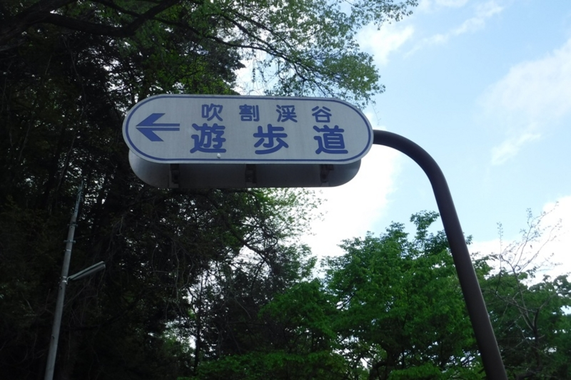 f:id:hirotaka72:20170514145449j:image:w300