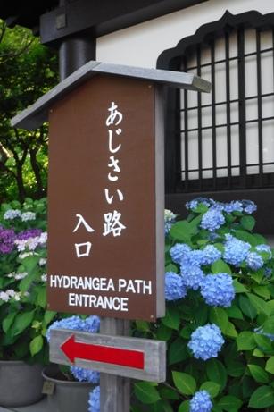 f:id:hirotaka72:20170610143226j:image:w185