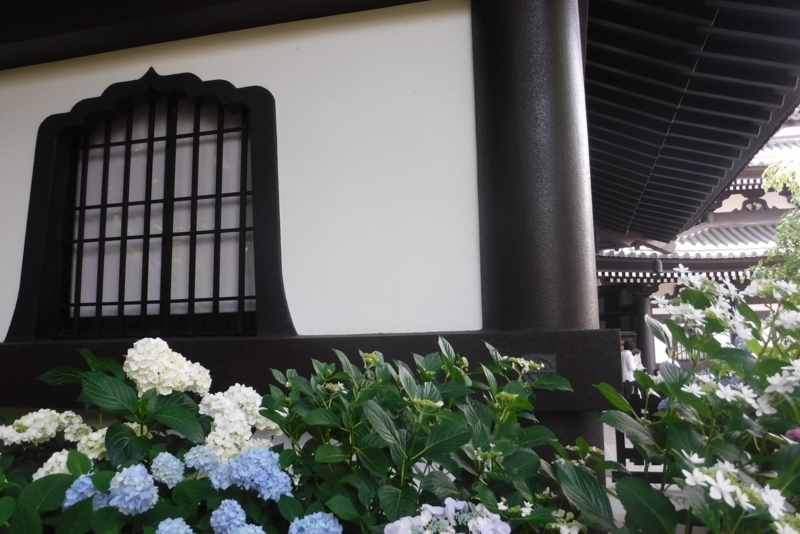 f:id:hirotaka72:20170610143334j:image:w415