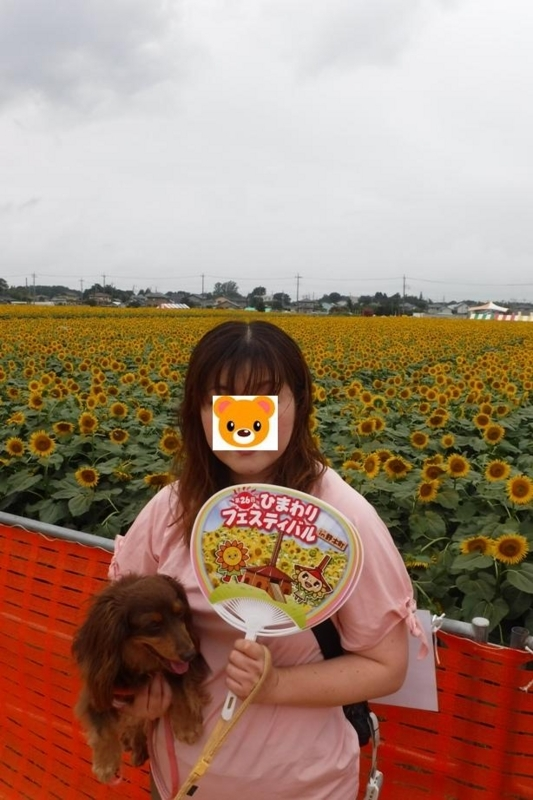 f:id:hirotaka72:20170729095709j:image:w300