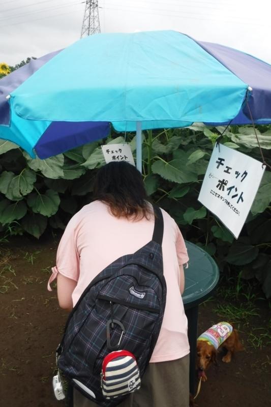 f:id:hirotaka72:20170729101121j:image:w185