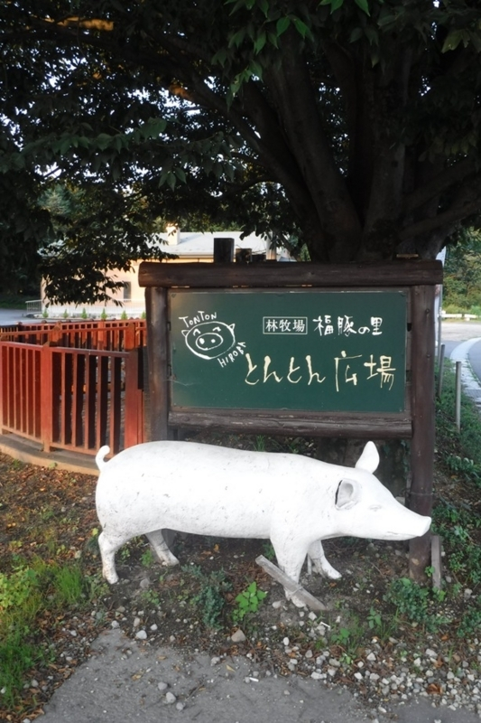 f:id:hirotaka72:20170805175854j:image:w110