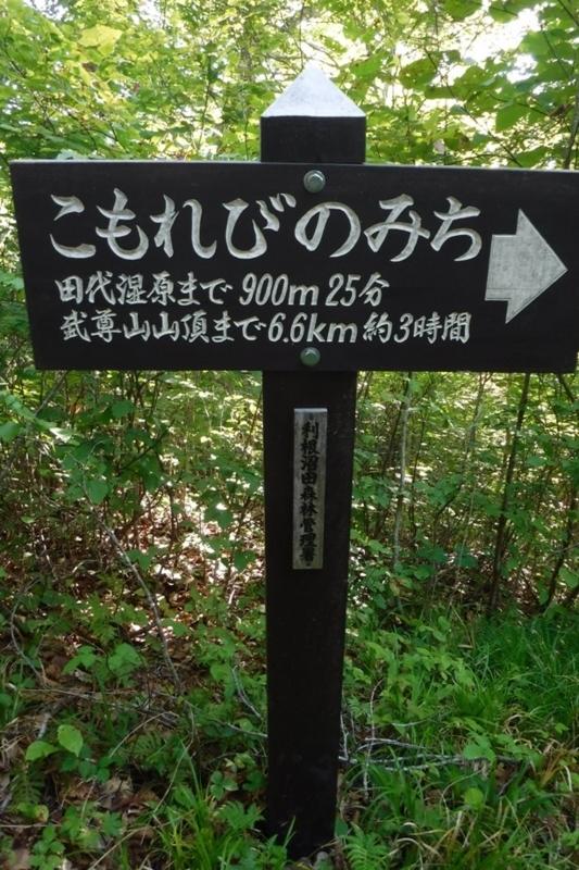 f:id:hirotaka72:20170910092212j:image:w185