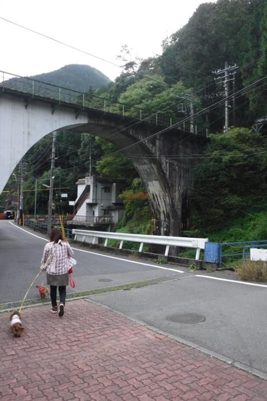 f:id:hirotaka72:20170930141650j:image:w185
