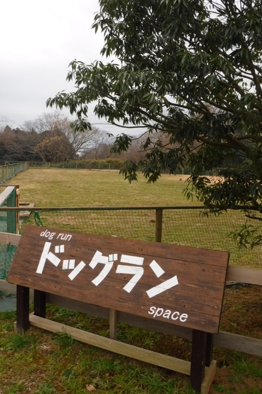f:id:hirotaka72:20171224113105j:image:w185
