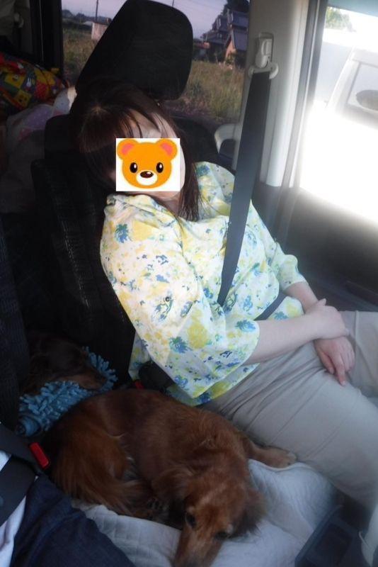 f:id:hirotaka72:20180604170337j:image:w360