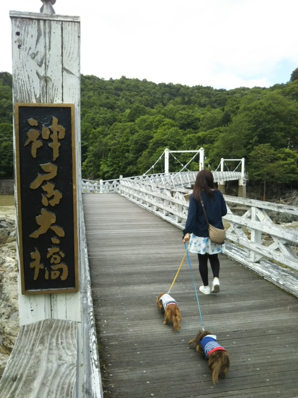 f:id:hirotaka72:20180716135814j:image:w300