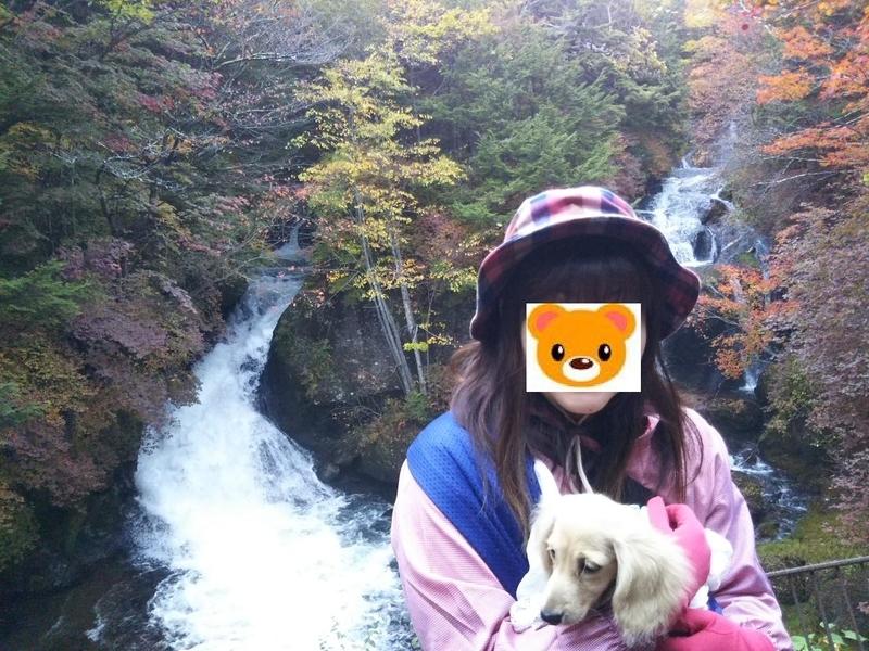f:id:hirotaka72:20181013155832j:image:w385