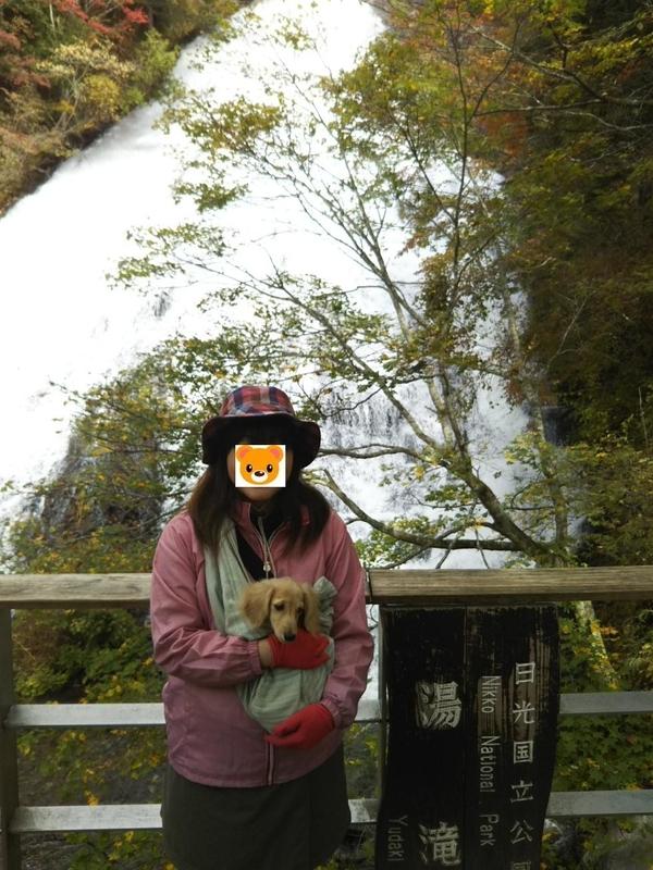 f:id:hirotaka72:20181014102444j:image:w300