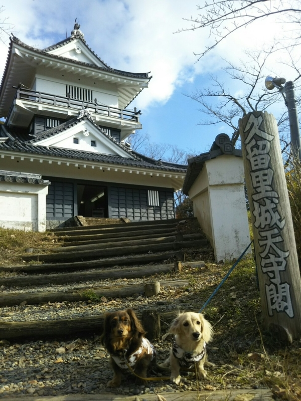 f:id:hirotaka72:20181215104535j:image:w215