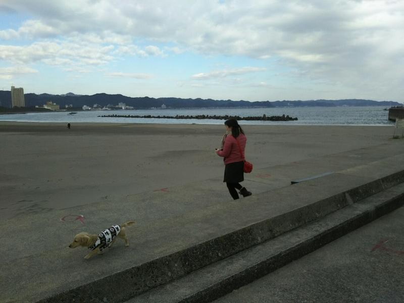 f:id:hirotaka72:20181215131545j:image:w300