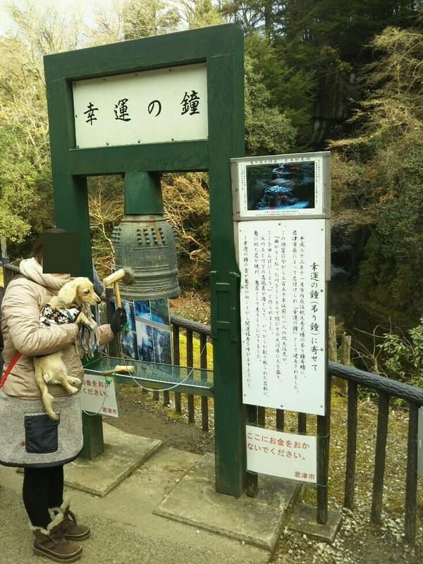f:id:hirotaka72:20181216132125j:image:w200