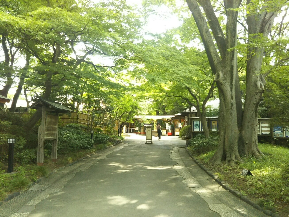 f:id:hirotaka72:20190810110132j:plain