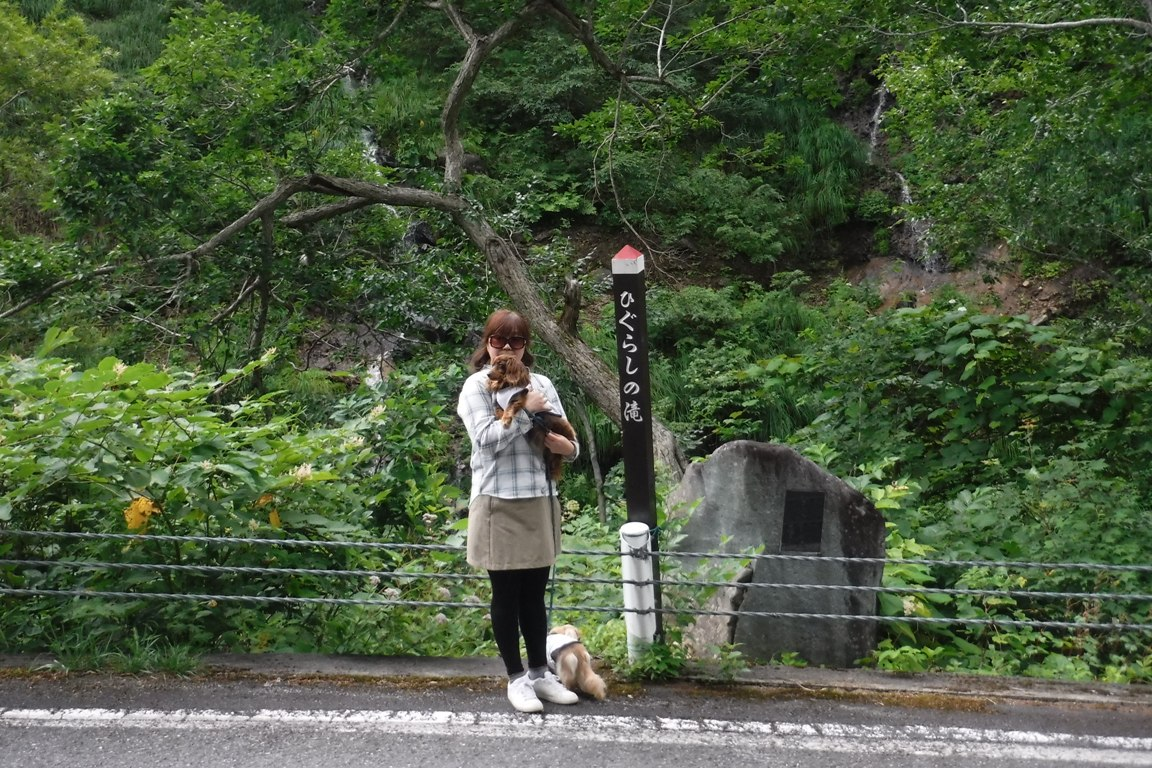 f:id:hirotaka72:20190814121318j:plain