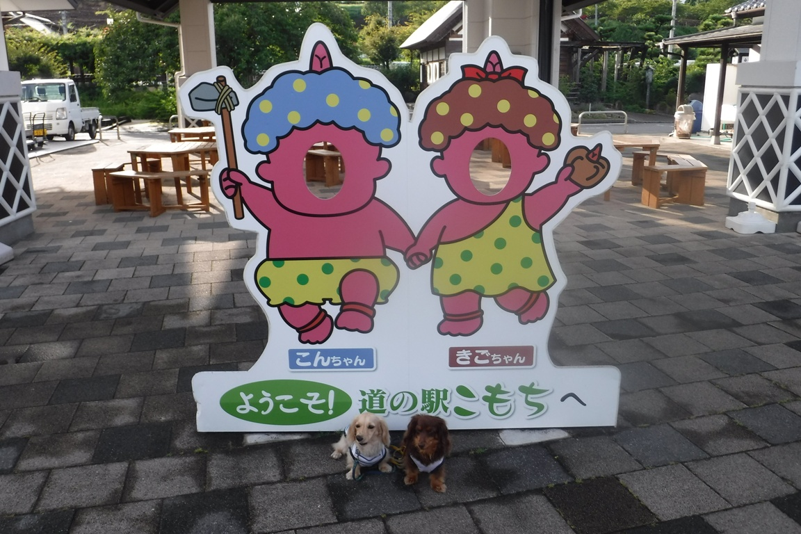 f:id:hirotaka72:20190814163038j:plain
