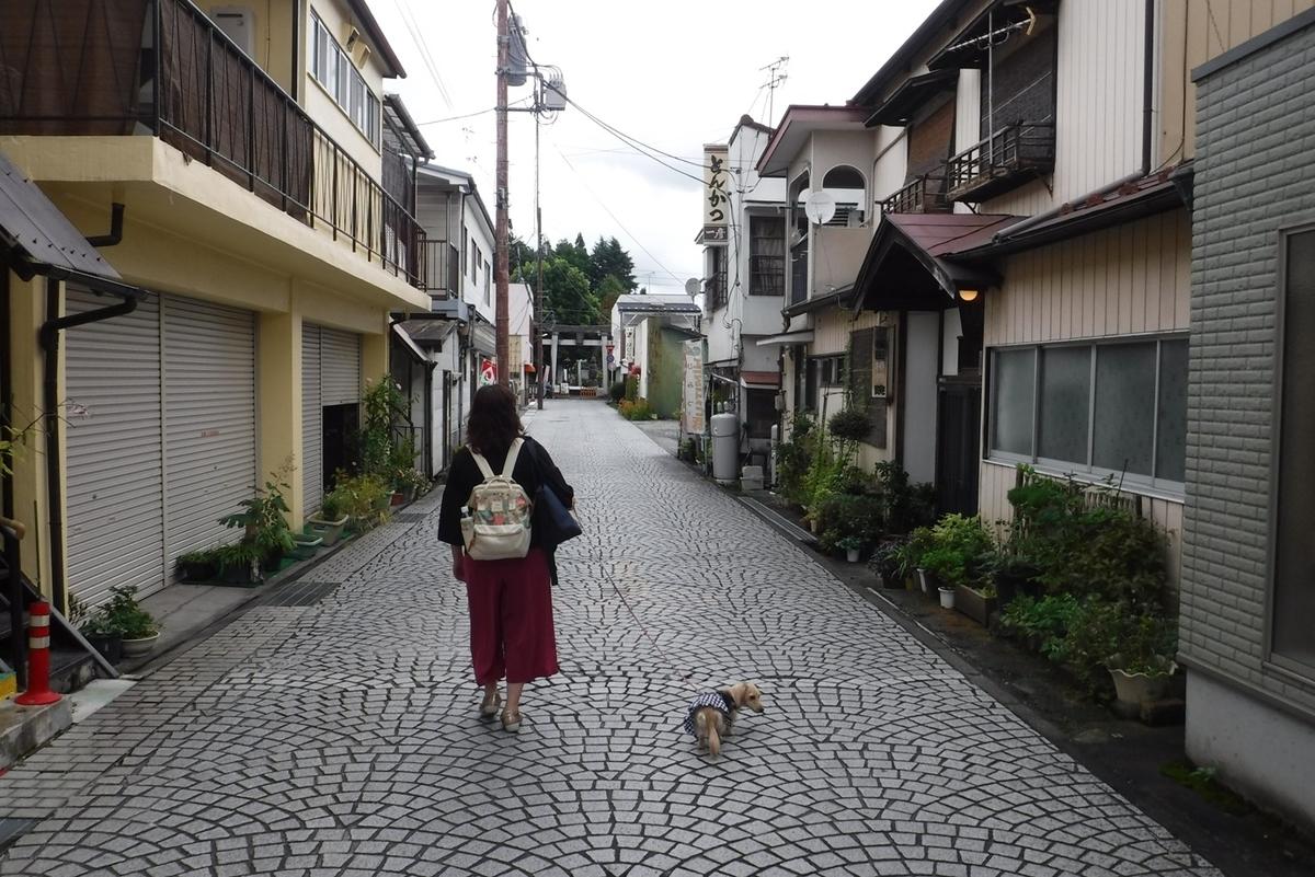 f:id:hirotaka72:20190921101916j:plain
