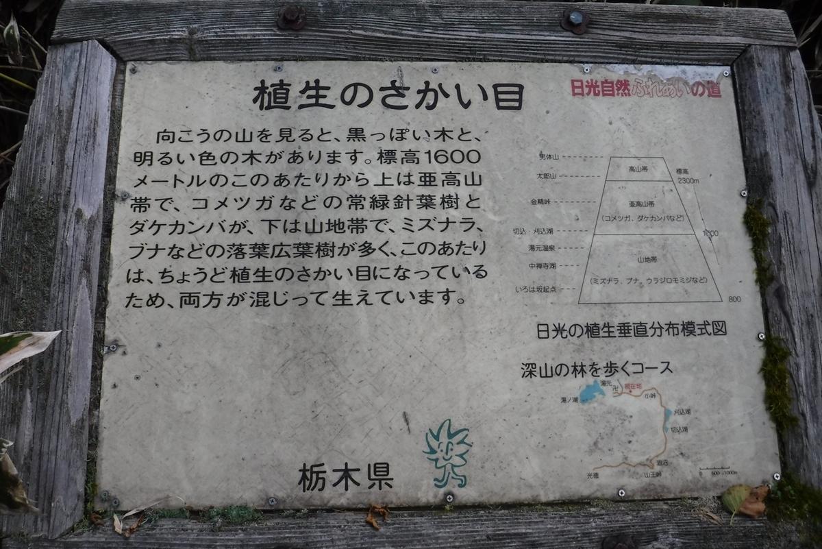 f:id:hirotaka72:20190922090857j:plain
