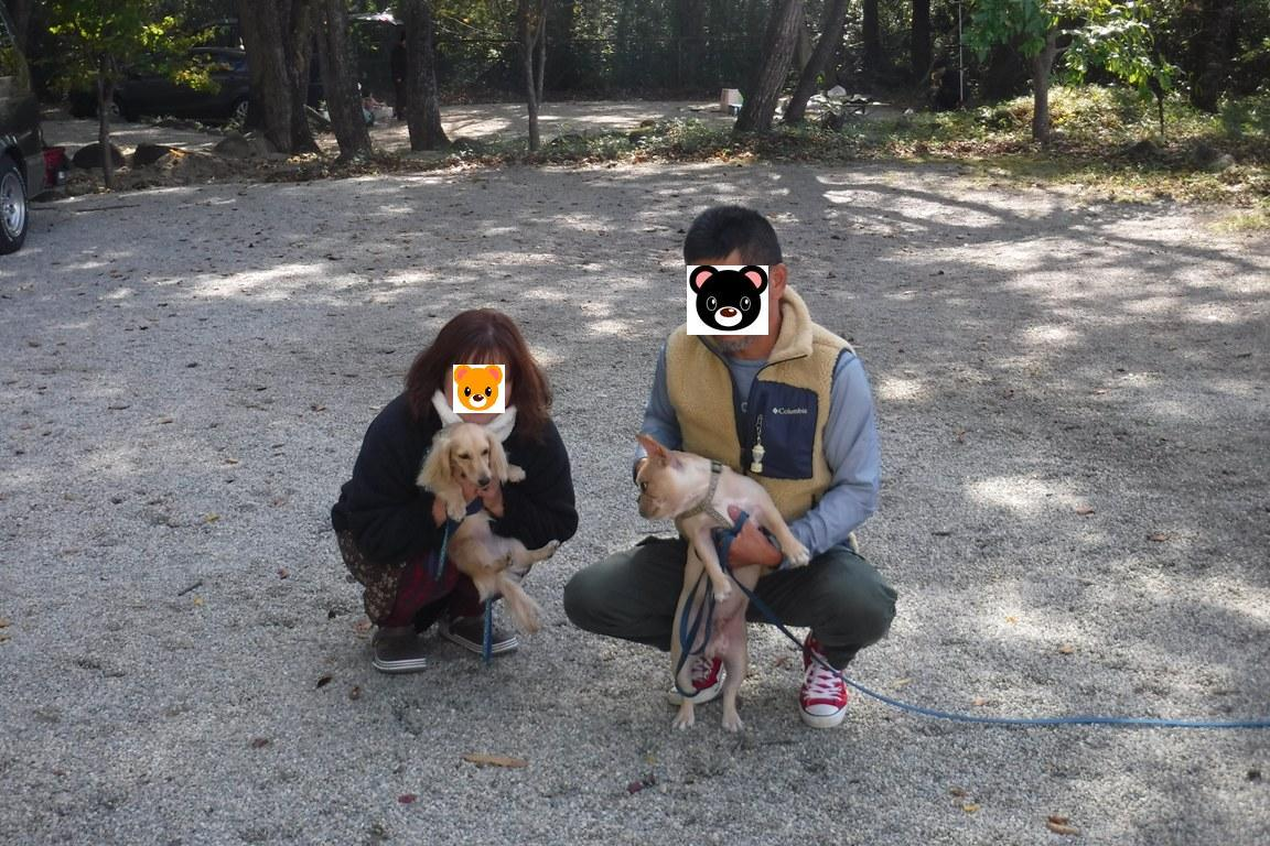 f:id:hirotaka72:20191104103855j:plain