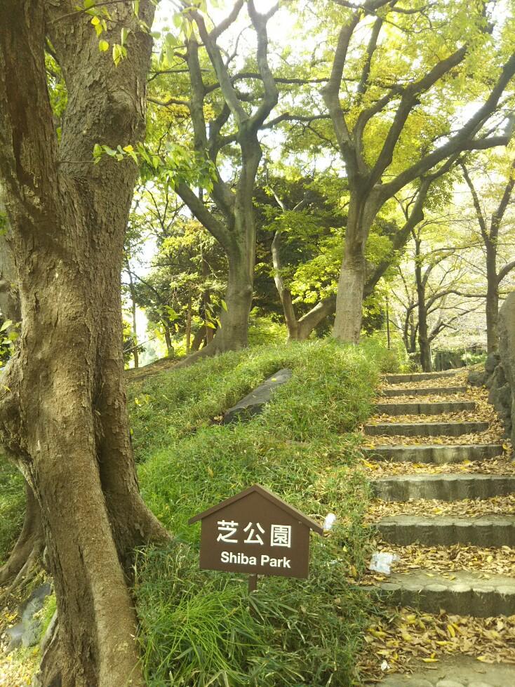 f:id:hirotaka72:20191114093020j:plain