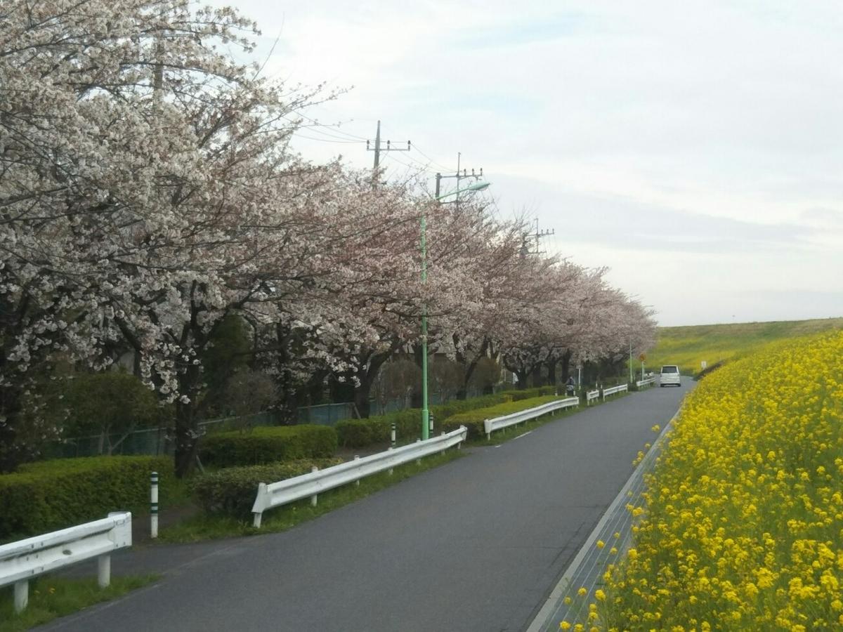 f:id:hirotaka72:20200328101624j:plain