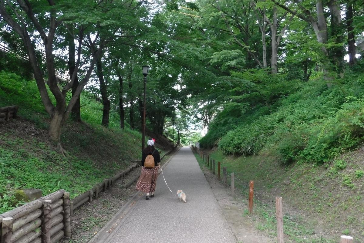 f:id:hirotaka72:20210724155508j:plain