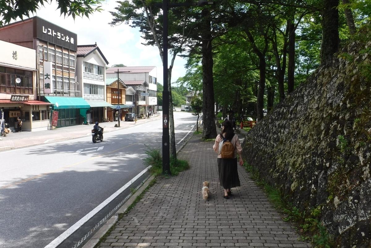 f:id:hirotaka72:20210801103506j:plain