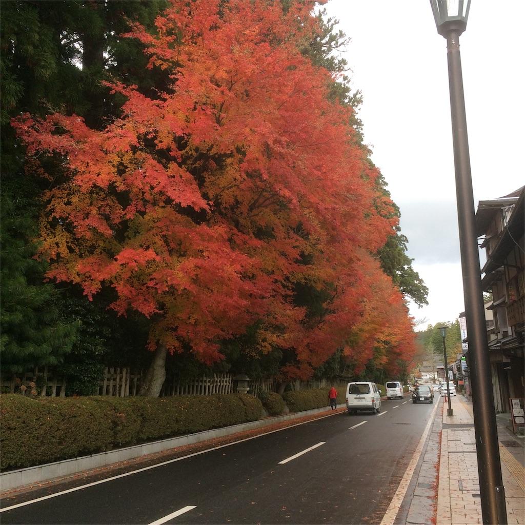 f:id:hirotaka_hachiya:20171119230904j:image