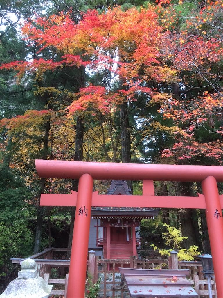 f:id:hirotaka_hachiya:20171119230948j:image
