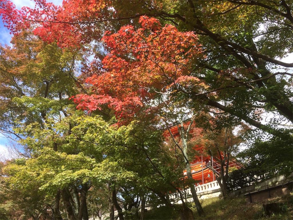 f:id:hirotaka_hachiya:20171119232954j:image