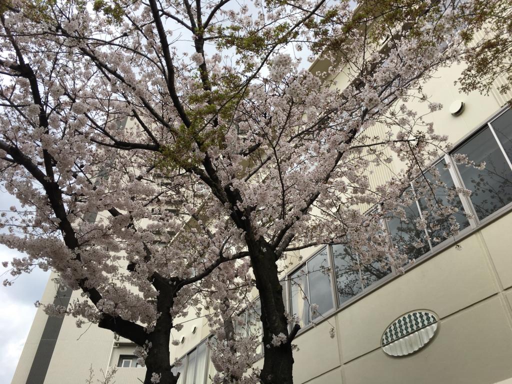 f:id:hirotano:20170407214631j:plain