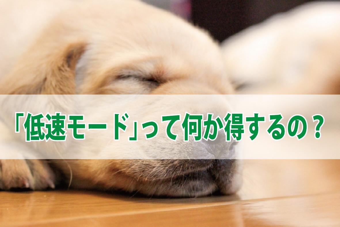 f:id:hirotsu73:20190418172126j:plain