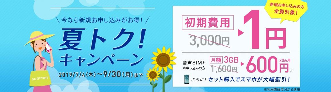 f:id:hirotsu73:20190710230628j:plain