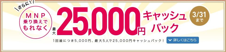 f:id:hirotsu73:20200206183841j:plain
