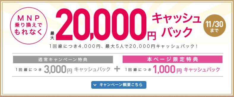 f:id:hirotsu73:20201106144929j:plain