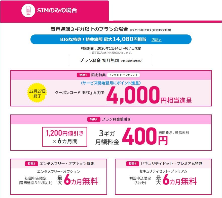 f:id:hirotsu73:20201202003209j:plain
