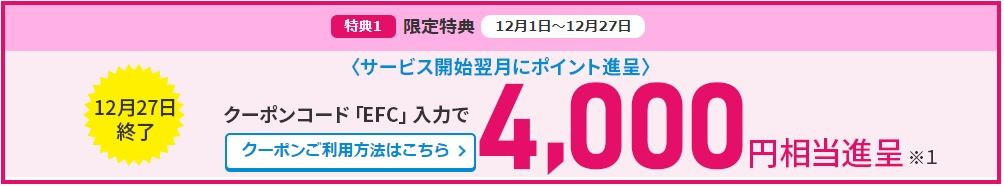 f:id:hirotsu73:20201202013649j:plain