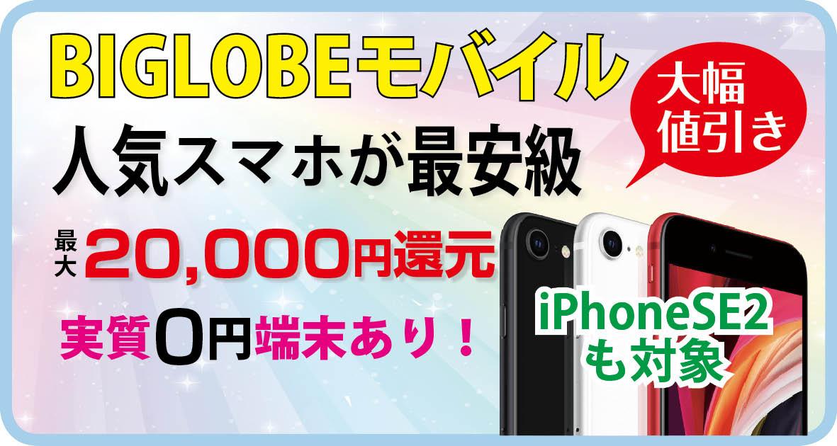 f:id:hirotsu73:20201202103345j:plain