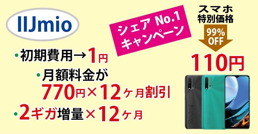 f:id:hirotsu73:20210208222218j:plain