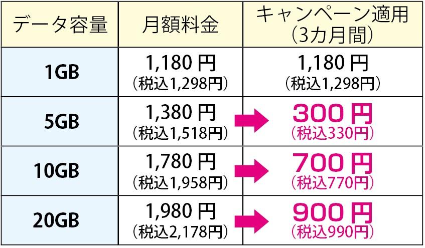 f:id:hirotsu73:20210301133254j:plain