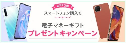 f:id:hirotsu73:20210501153853j:plain