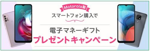 f:id:hirotsu73:20210501154039j:plain
