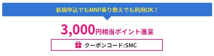 f:id:hirotsu73:20210602223336j:plain