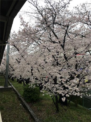 f:id:hirouehiroue:20170413215637j:image