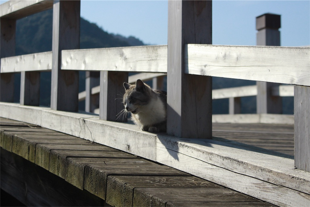 f:id:hiroyanto:20170312221006j:image