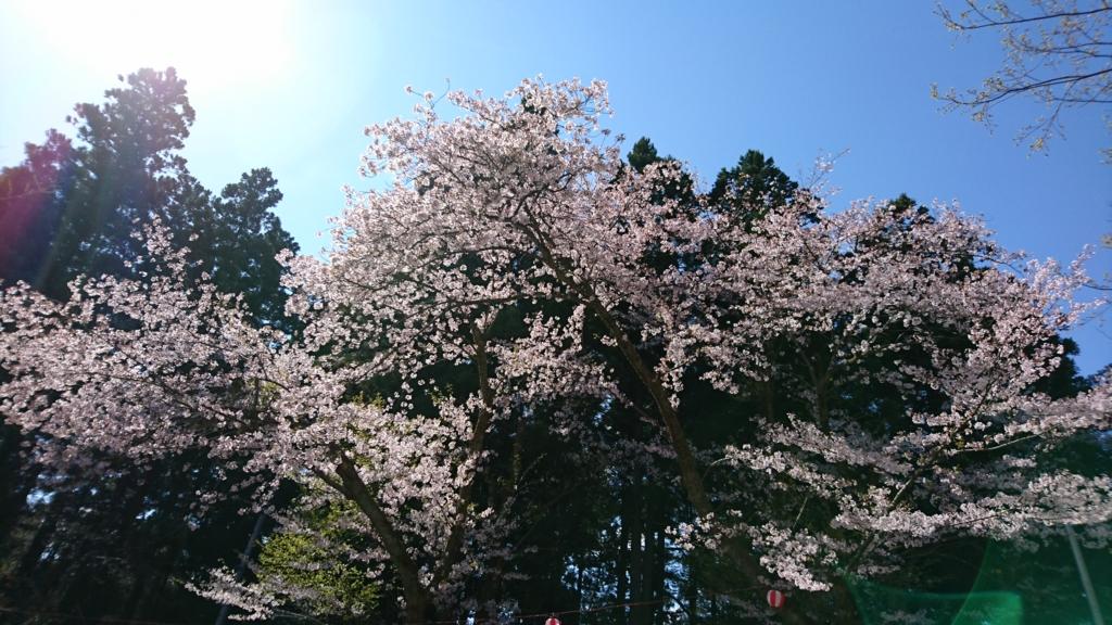 f:id:hiroyuki-aya:20170424005509j:plain