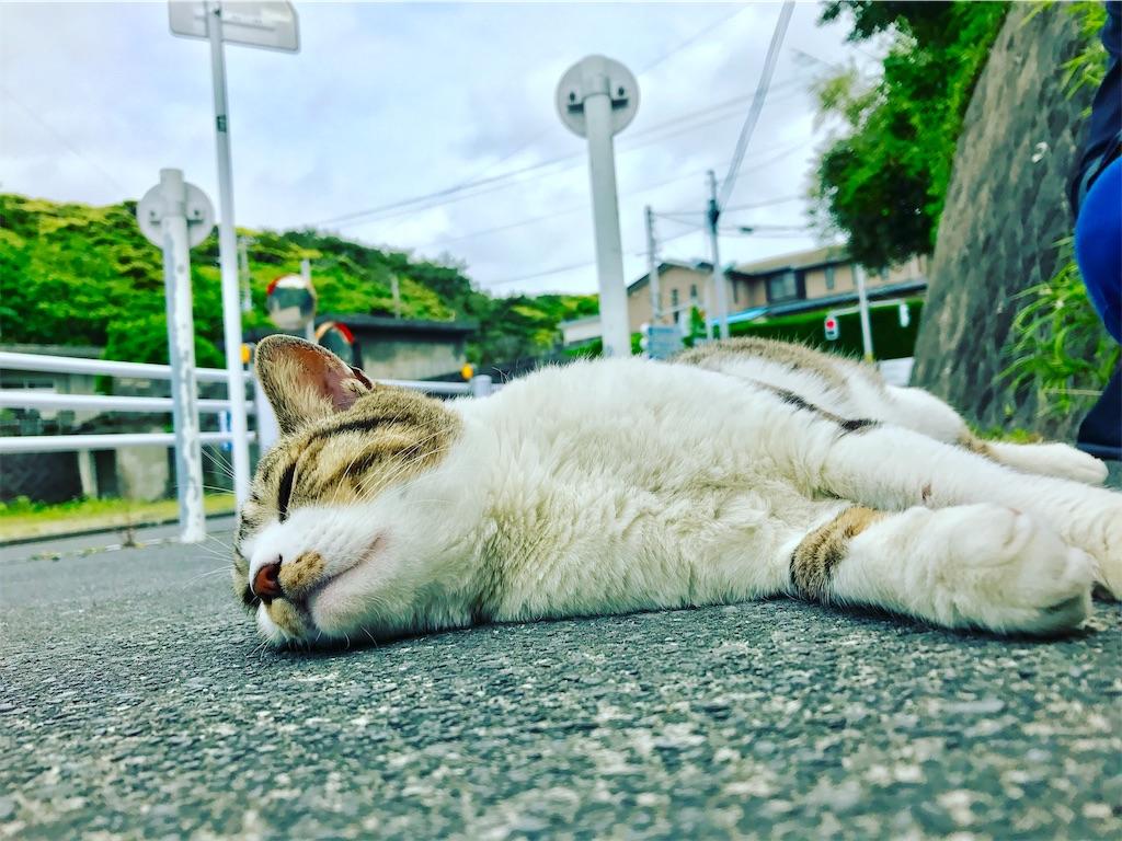 f:id:hiroyuki913:20191229164118j:image