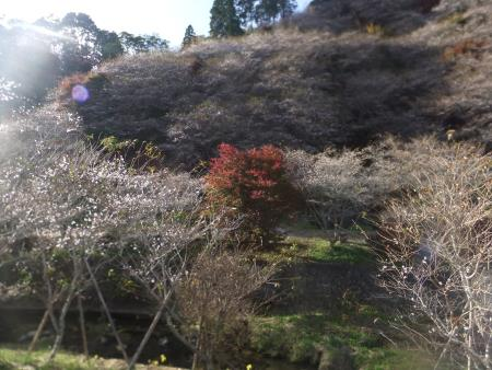 f:id:hiroyukmurata:20170103224813j:plain