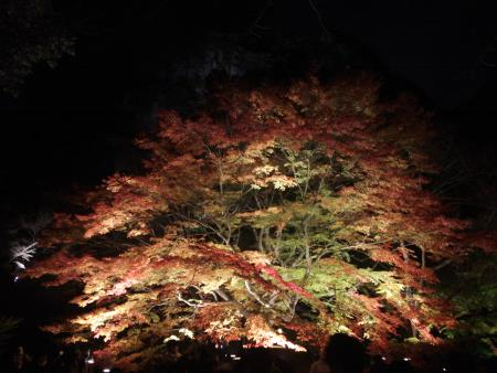 f:id:hiroyukmurata:20170103230558j:plain