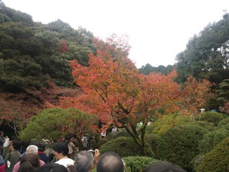 f:id:hiroyukmurata:20170103230743j:plain