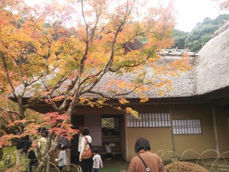 f:id:hiroyukmurata:20170103230808j:plain